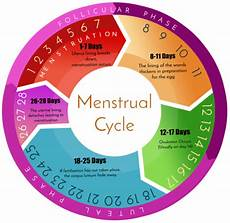 24 Day Menstrual Cycle Chart When One Is To Receive Her Period In 10 Days Time Is She