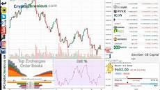 Bitcoin Live Chart Live Bitcoin Charts 24 7 Btc Vs Usd Chart W Rsi Youtube