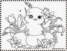 gambar mewarnai anak ayam halaman mewarnai gambar hewan