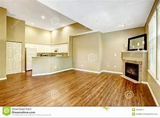 Empty Apartment With Open Floor Plan. Living Room With Fireplac Stock Photo   Image: 44209011