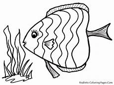 Malvorlagen Fisch Kostenlos Tropical Fish Coloring Pages Getcoloringpages