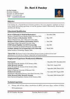 Professor Resume Examples University Professor Resume Examples June 2020