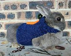 rabbit clothes for bunnies pet bunny clothes etsy