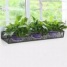 piante da davanzale giardinaggio come avere un davanzale sempre fiorito foto