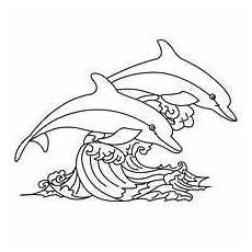 fiches p 233 dagogiques sur les animaux les dauphins