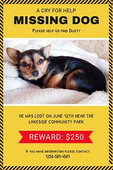 Lost Dog Poster Maker Copy Of Yellow Missing Dog Poster Postermywall