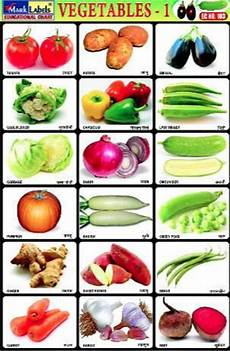Vegetable Picture Chart Vegetable Chart ट च ग च र ट श क षण च र ट In Mumbai