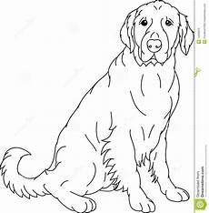 line drawing labrador search golden retriever
