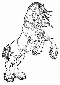 arabian drawing at getdrawings free