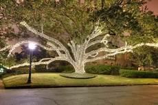 Tree Lights San Antonio Tree Lighting Outdoor Tree Wrap