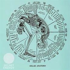 12 Cell Salts Chart Image Result For Image 12 Cell Salts And Astrology