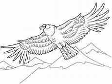 Malvorlagen Kinder Adler Adler 3 Ausmalbilder Malvorlagen F 252 R Kinder