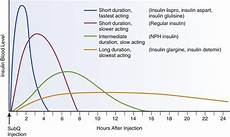 Lantus Peak Times Chart What Are The Different Types Of Insulin Diabetes Self
