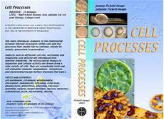 Cell Processes Cytographics Cell Processes Instuctor S Guide