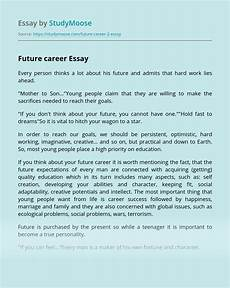 Essay About Future Future Career Free Essay Example