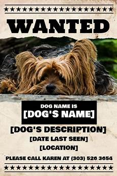 Lost Dog Poster Maker Copy Of Lost Dog Flyer Postermywall