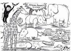 animals liz million author and illustrator of