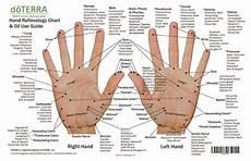 Hand Chart Hand Amp Foot Reflexology On Cardstock 8 5x5 5 Sheet