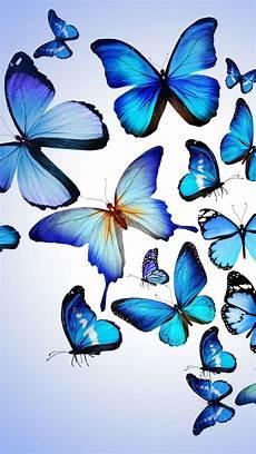 iphone lock screen butterfly wallpaper hd blue butterflies iphone wallpaper butterfly wallpaper