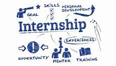 Free Interns 8 Facts Which Reflect The Importance Of Internships