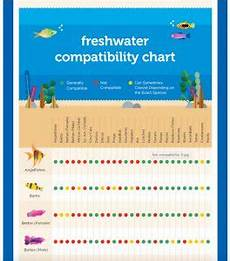 Red Shark Compatibility Chart Petco Introduces A Freshwater Compatibility Chart