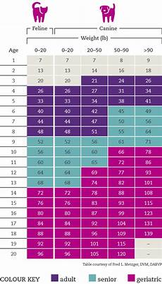 Puppy Feeding Chart By Weight Age Cat Amp Dog Age Calculator What S The Real Age Of Your Pet