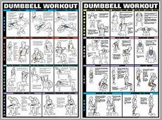 Free Weight Training Chart Dumbbell Workout Dumbells Free Weights Pro Fitness Wall