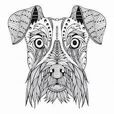 Malvorlage Hund Mandala Kostenloses Ausmalbild Hund Schnauzer Die Gratis