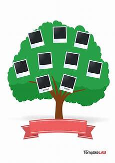 Small Family Tree Template 41 Free Family Tree Templates Word Excel Pdf ᐅ