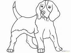 Ausmalbilder Hunde Beagle Http Pad1 Whstatic Images Thumb 1 1f Draw A And