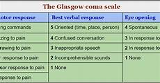 Glasgow Coma Scale The Glasgow Coma Scale Gcs In Practice