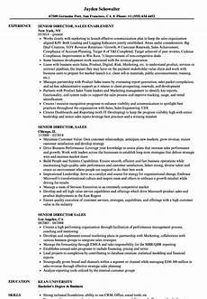 Director Of Sales Resume Senior Director Sales Resume Samples Velvet Jobs