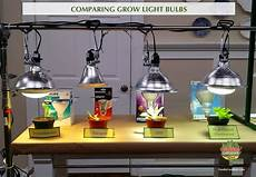 Types Of Light Bulbs For Growing Plants Grow Lights For Beginners Start Plants Indoors The