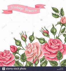 Fondos Para Invitaciones Fondo Con Vintage Roses Retro Decorativas Flores Imagen