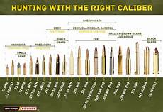 Rifle Caliber Chart Smallest Largest Use This Rifle Caliber Chart To Pick The Right Ammo For