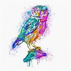 Colorful Owl Art Colorful Owl Painting By Marian Voicu