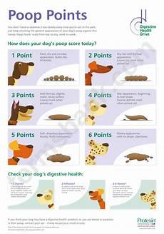 Dog Stool Colour Chart Dog Chart Printable Pdf Download