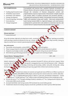 Executive Cv Example Executive Cv Examples The Cv Store