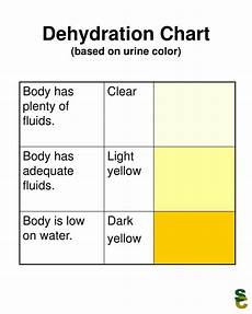 Dehydration Chart Ppt Dehydration Chart Based On Urine Color Powerpoint