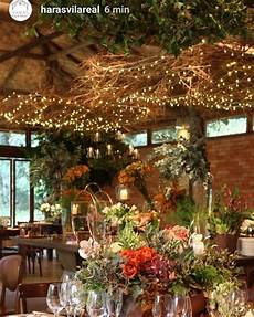 plantas penduradas ao ar livre a imagem pode conter mesa 225 rvore planta e atividades ao