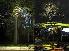 Tree Lights Garden Lighting Tips From National Lighting National