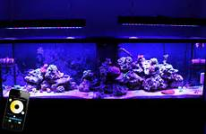 Led Black Light For Fish Tank Dimmable Led Aquarium Light For Fish Tank And Coral 165w
