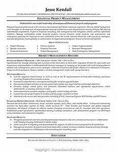 Project Manager Resume Objectives Professional Program Manager Resume Microsoft Programger