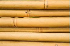 Bamboo Texture Bamboo Texture Nature Photos Creative Market