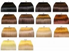 Hair Number Chart Qlassy Hair Extensions Premium Remy Human Hair