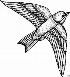 Malvorlage Vogel Fliegend Fliegender Vogel Oben Ausmalbild Malvorlage Tiere