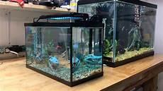 5 Gallon Tank Light Ekostore 6 Watt Multi Color 36 Led Aquarium Light For 5