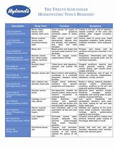 12 Cell Salts Chart Cell Salts Chart Google Search Home And Health
