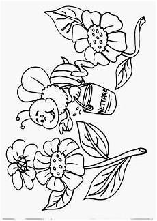 fiori da disegnare disegni da colorare fiori