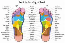 Reflexology Chart Foot Pressure Points 15 Reflexology Pressure Points To